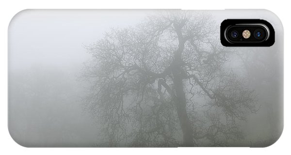 Ghostly Oak In Fog - Central California IPhone Case