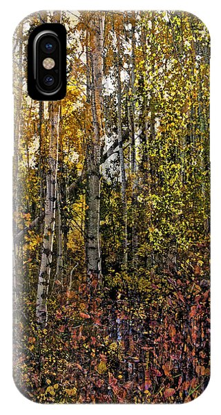 Ghosts Of A Quaking Aspen IPhone Case