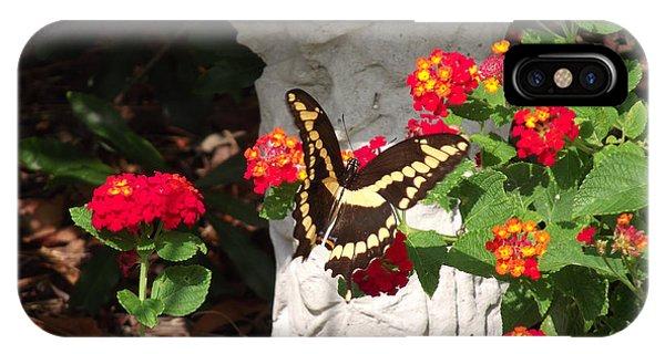 Giant Swallowtail On Lantana IPhone Case