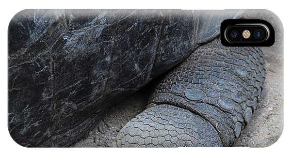 Giant Tortoise Phone Case by Debbie Cundy