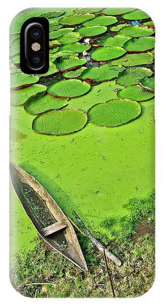 Giant Water Lilies And A Dugout Canoe In Amazon Jungle-peru IPhone Case