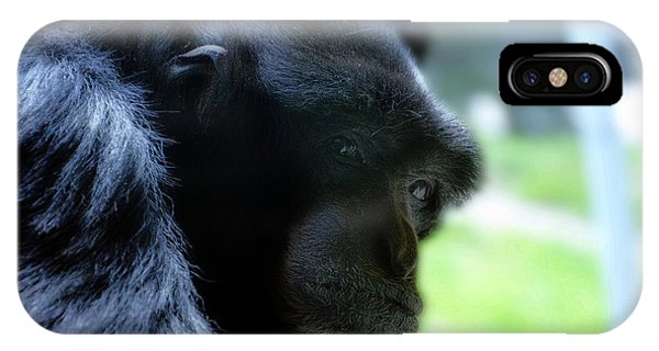 Gibbon Close Up IPhone Case