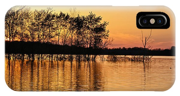 Gilded Sunset IPhone Case