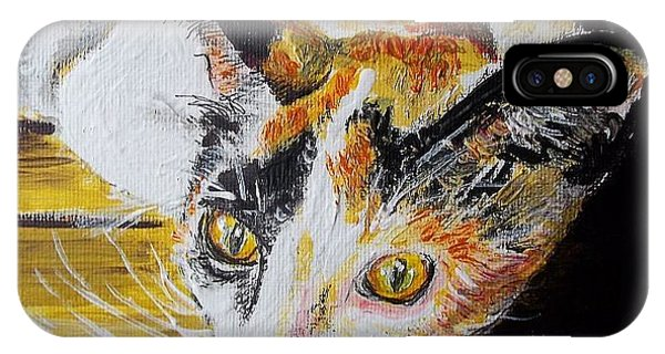 Ginger Stray Cat IPhone Case