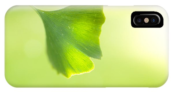 Gingko IPhone Case