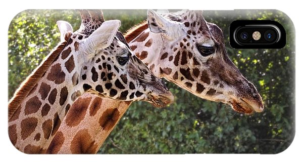 Giraffe 03 IPhone Case