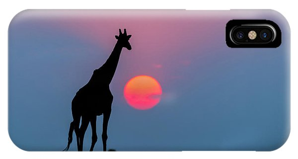 Giraffe At Sunset Chobe Np Botswana IPhone Case