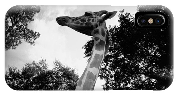 Giraffe Bw - Global Wildlife Center IPhone Case