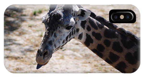 Giraffe Close-up IPhone Case