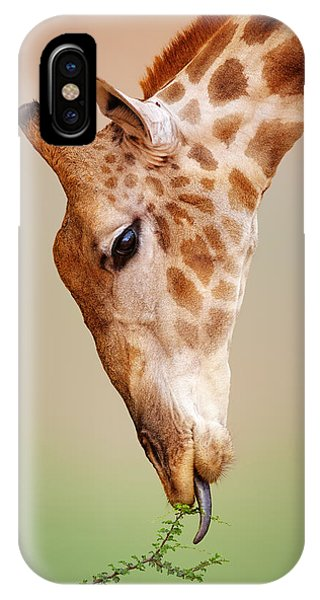Close-up iPhone Case - Giraffe Eating Close-up by Johan Swanepoel