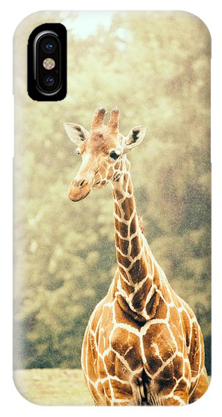Giraffe iPhone Case - Giraffe In The Rain by Pati Photography