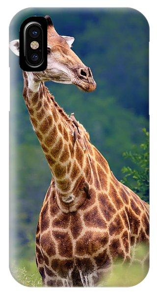 Head And Shoulders iPhone Case - Giraffe Portrait Closeup by Johan Swanepoel