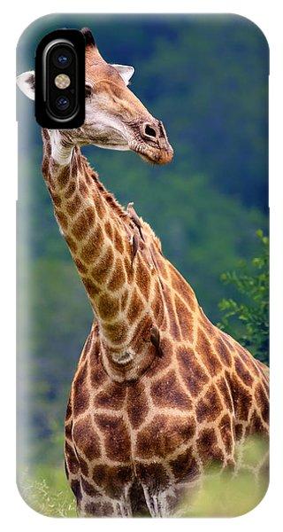 Giraffe Portrait Closeup IPhone Case