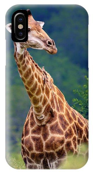Foliage iPhone Case - Giraffe Portrait Closeup by Johan Swanepoel