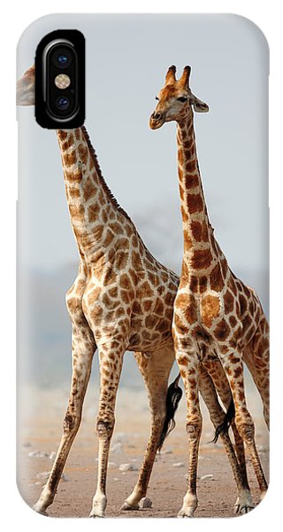 Giraffe iPhone Case - Giraffes Standing Together by Johan Swanepoel