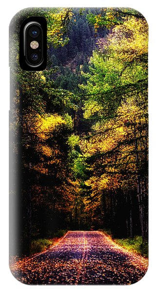 Glacier Fall Road IPhone Case