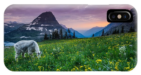 Goat iPhone Case - Glacier National Park 4 by Larry Marshall