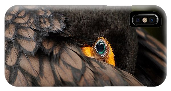 Glancing IPhone Case