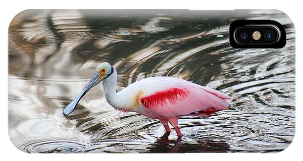Glassy Spoonbill IPhone Case