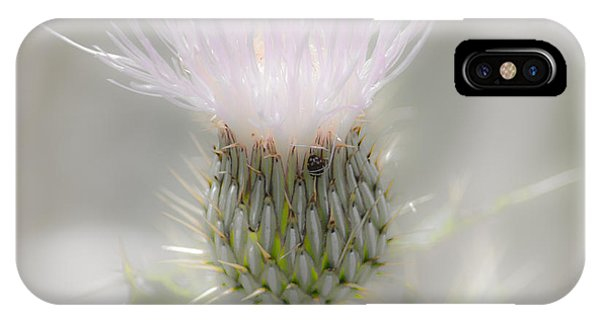 Glimmering Thistle IPhone Case