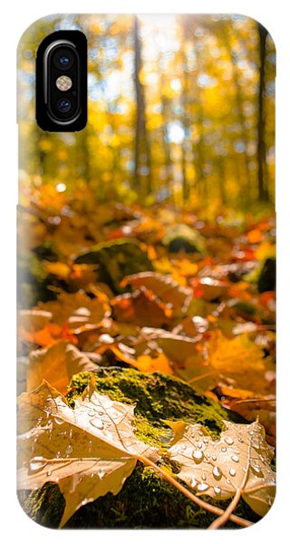 Glistening Autumn Dew IPhone Case