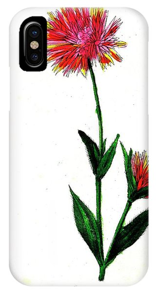 Globe Amaranth Phone Case by Collection Abecasis/science Photo Library