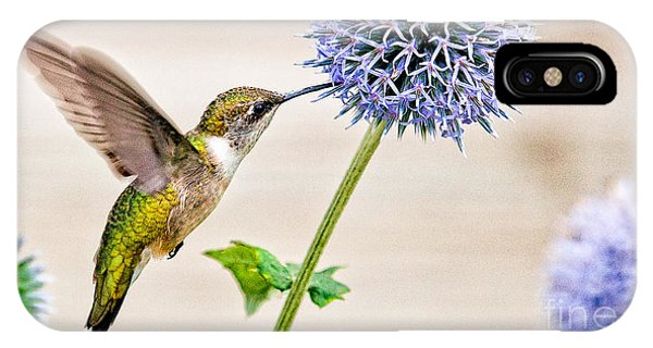 Globe Thistle Hummer IPhone Case