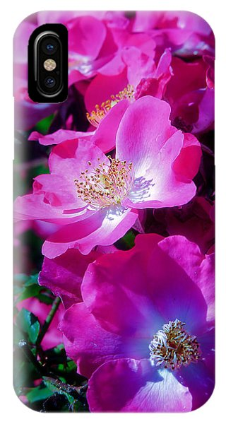 Glorious Blooms IPhone Case