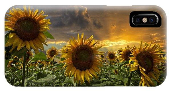 Golden Gardens iPhone Case - Glory by Debra and Dave Vanderlaan