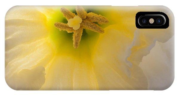 Glowing Daffodil IPhone Case