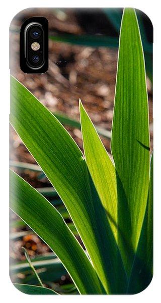 Crossville iPhone X Case - Glowing Iris Leaves 1 by Douglas Barnett