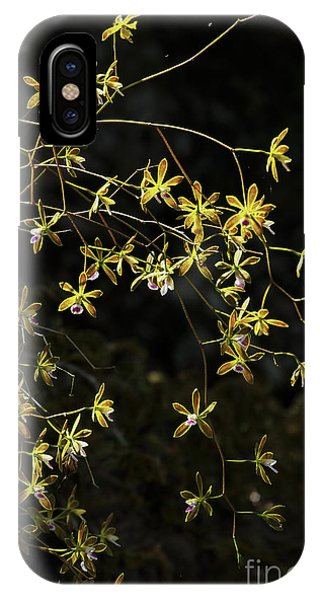 Glowing Orchids IPhone Case