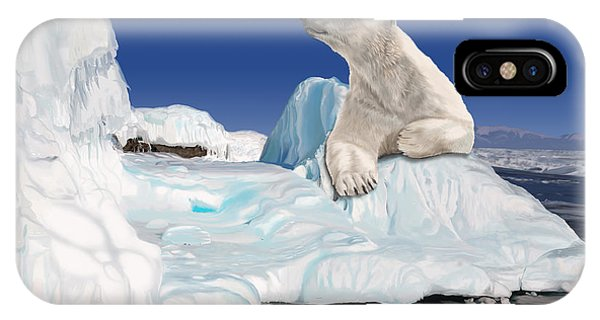 Go With The Floe IPhone Case
