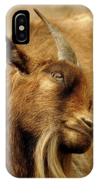 Goat Phone Case by Maria Mosolova/science Photo Library
