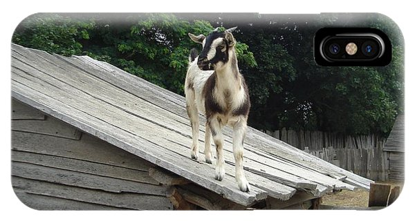 Goat On The Roof IPhone Case