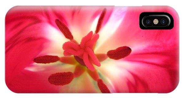 God's Floral Canvas 1 IPhone Case