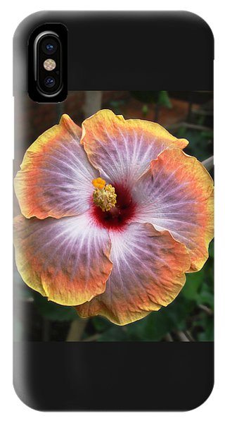Gold Rim Hibiscus IPhone Case
