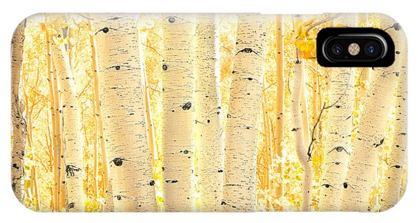 Golden Aspens Utah IPhone Case