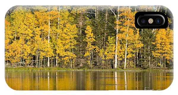 Golden Autumn Pond IPhone Case