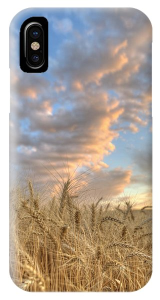 Golden Barley IPhone Case