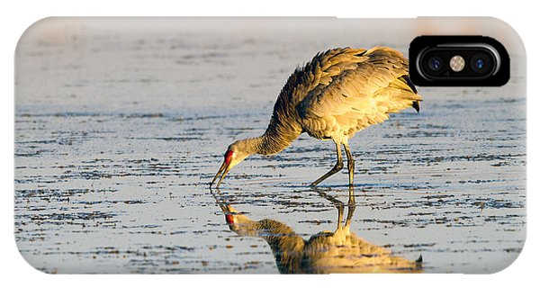 Golden Crane Reflections IPhone Case
