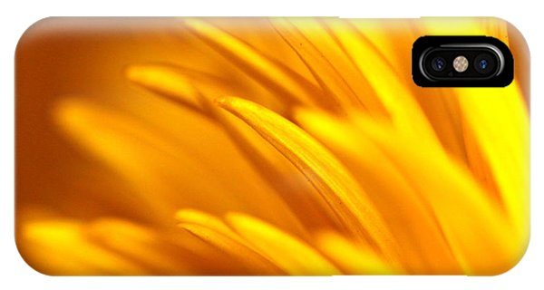 Golden Dahlia IPhone Case
