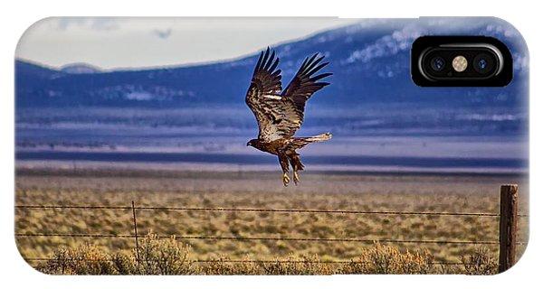 Golden Eagle IPhone Case