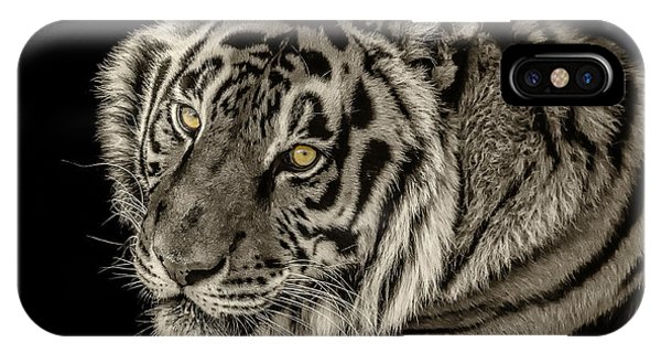 Golden Eyes Of The Tiger IPhone Case