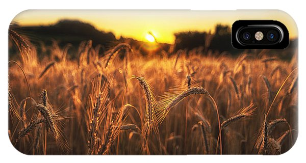 IPhone Case featuring the photograph Golden Fields by Ryan Wyckoff