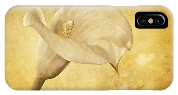 Golden Glow Cala Lily IPhone Case