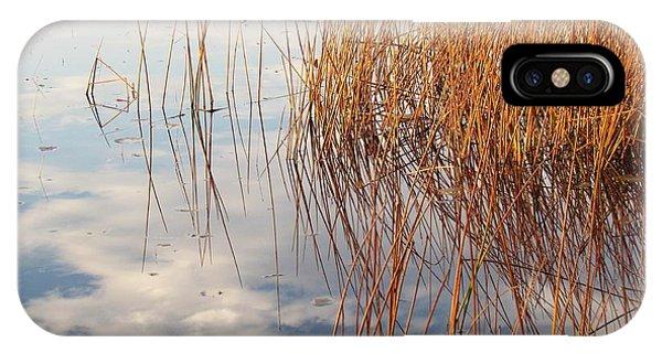 Golden Grasses Phone Case by Lili Feinstein