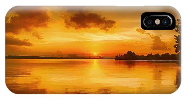 Golden Honey Sunset Phone Case by Dan Holland