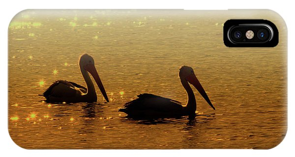 Pelican iPhone Case - Golden Morning by Mike  Dawson