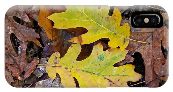 Golden Oak Leaf Duet IPhone Case